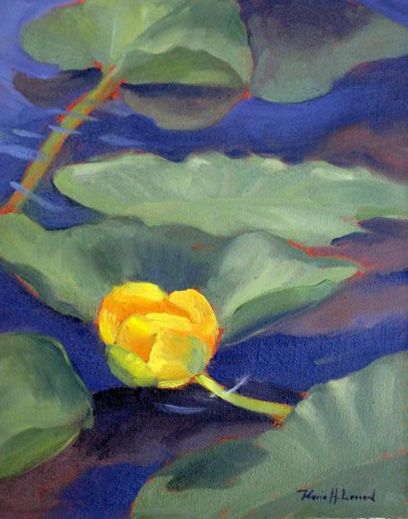 sea-lilies-grand-tetons