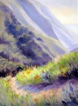 http://fineartamerica.com/featured/soberanes-canyon-i-karin-leonard.html