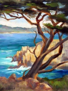 Point Lobos Cypress
