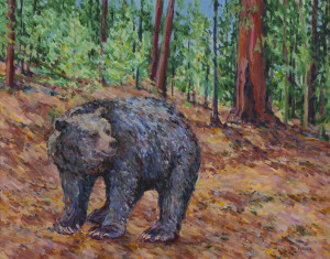 Bear in Sequoia ~ Joy Collier, California
